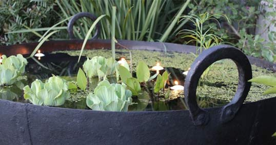 A small pond with candles in it