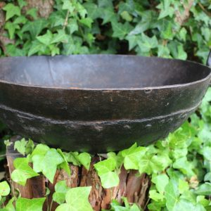 Iron pot in ivy