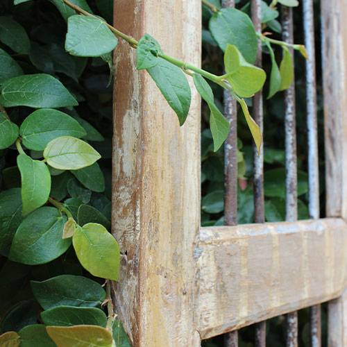 A wooden gate with iron bars