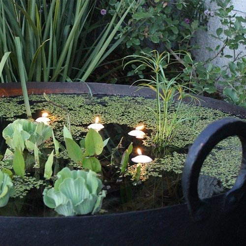 Candles floating in a water bowl