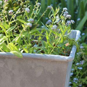 Zinc garden planter pot