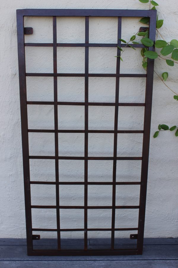 Metal trellis with a honeysuckle plant