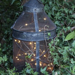 Lantern with wire fairy lights in the ivy