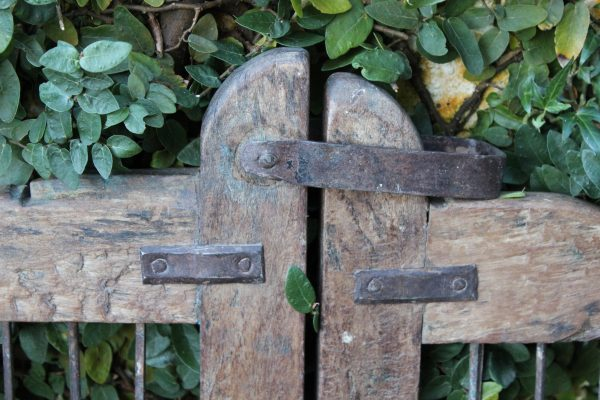 Old timber gate latch and iron trellis