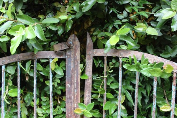 Iron gate with latch