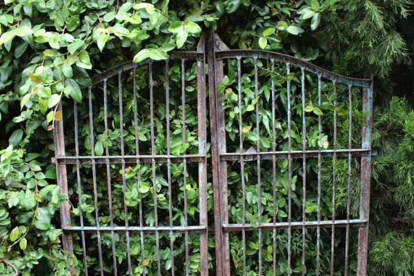Iron gates with vertical bars