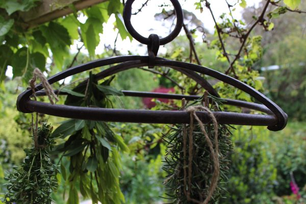 iron herb hanger